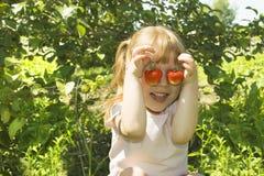 Amusement de fraise Photo stock