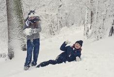 Amusement de l'hiver de famille image stock