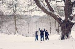 Amusement de l'hiver de famille Photographie stock