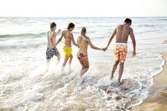Amusement de mer Image libre de droits