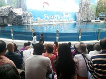 Amusement parks in Bangkok, Thailand. Safari World in Bangkok Stock Photos