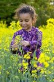 Amusement parmi les fleurs Photographie stock