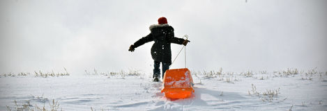 Amusement Sledding Photo stock