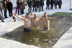 Amusements de natation de glace Images stock
