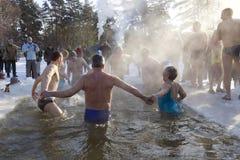 Amusements de natation de glace Photographie stock