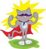 Amusing cat superhero Stock Images