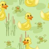 Amusing frog Stock Image