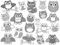 Amusing and funny owls, black outlines Stock Photography