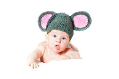 The amusing kid. A little mouse on a white background stock photo