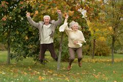 Amusing old couple. Amusing happy smiling old couple on yellow autumn park background Stock Photography