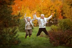 Amusing old couple. Amusing happy smiling old couple on yellow autumn park background Royalty Free Stock Photography