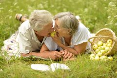 Amusing old couple Stock Photography