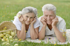Amusing old couple. On picnic eating apples on grass stock image
