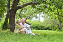 Amusing old couple on picnic Royalty Free Stock Images