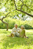Amusing old couple on picnic. Portrait of Amusing old couple on picnic royalty free stock photo