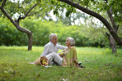Amusing old couple on picnic Royalty Free Stock Photography