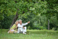 Amusing old couple on picnic. Portrait of Amusing old couple on picnic royalty free stock photography