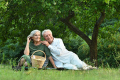 Amusing old couple  in summer park Royalty Free Stock Photos