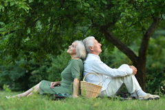 Amusing old couple  in summer park Stock Images