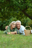 Amusing old couple  in summer park Royalty Free Stock Images
