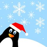 Amusing penguin on a background blue sky Royalty Free Stock Image