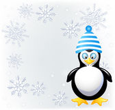 Amusing penguin in knitted hat Stock Photography