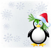 Amusing  penguin with Santa Claus hat Royalty Free Stock Photography