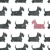 Amusing Vector Black Scottish Terriers Seamless Pattern Stock Photography