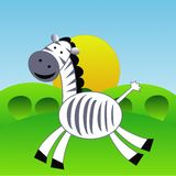 An amusing zebra  hurries on a green grass Stock Photo