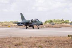 A-1 AMX des TOLLEN Cruzex in Kraft lizenzfreie stockfotografie