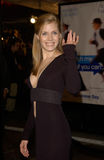 Amy Adams Royalty Free Stock Images