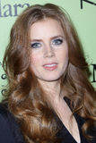 Amy Adams Royalty Free Stock Photos
