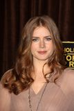 Amy Adams. At the Hollywood Foreign Press Association's Cecil B. DeMille Award Recipient Announcement, Beverly Hilton Hotel, Beverly Hills, CA 11-09-11 royalty free stock photos