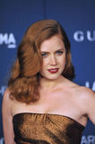 Amy Adams Stock Images
