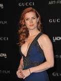Amy Adams. LOS ANGELES, CA - NOVEMBER 1, 2014: Amy Adams at the 2014 LACMA Art+Film Gala at the Los Angeles County Museum of Art royalty free stock image
