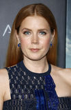 Amy Adams Stock Photos
