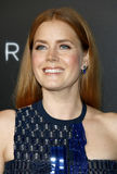 Amy Adams Royalty Free Stock Photo