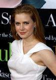 Amy Adams Stock Photo