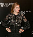 Amy Adams. NEW YORK-JAN 4: Actress Amy Adams attends the National Board of Review Gala at Cipriani Wall Street in New York on January 4, 2017 Royalty Free Stock Photo