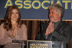 Amy Adams, Pedro Almodovar Images stock