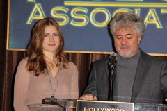 Amy Adams,Pedro Almodovar Royalty Free Stock Photos