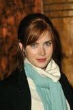 Amy Adams Royalty Free Stock Photos