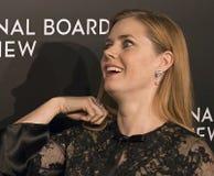 Amy Adams Scores en los premios de la película de NBR Imágenes de archivo libres de regalías