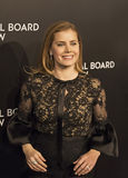 Amy Adams Scores en los premios de la película de NBR Foto de archivo libre de regalías