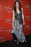 Amy Brennamen. At the Private Practice: The First Season - Extended Edition DVD Launch Event. Roosevelt Hotel, Hollywood, CA. 09-02-08 Stock Photos