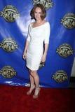 Amy Brenneman Stock Photo