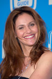 Amy Brenneman Stock Images