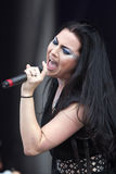 Amy Lee Lizenzfreies Stockbild