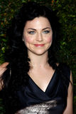 Amy Lee Stockbild