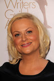 Amy Poehler Royalty Free Stock Photo
